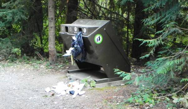 Bear Proof Garbage Bin? Whistler Summer Visit
