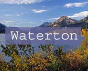 Waterton Title Page