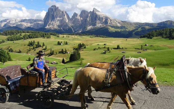 Horse Drawn Wagon, Alpe di Siusi, Hiking the Dolomites