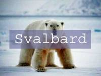 Svalbard Title Page