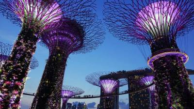 Gardens by the Bay, OCBC Skyway, Visit Singapore