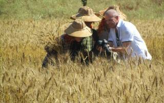 Rice Field Workers checking out Tourist Camera, Visit Myanmar