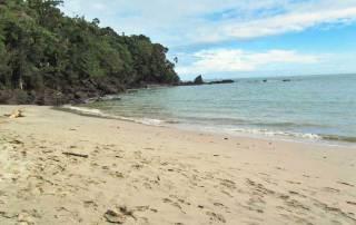 Manuel Antonio Beach, Costa Rica Tour