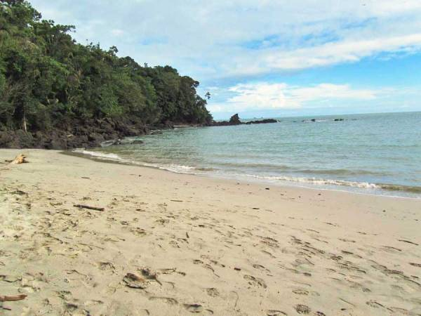 Manuel Antonio Beach, Costa Rica Tour
