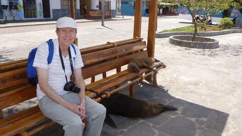 San Cristobal Seals, Galapagos, Tim