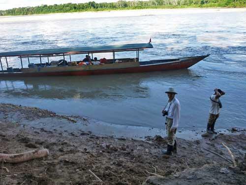 Tambopata River, Peru, Tim