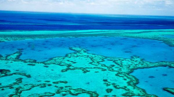 Hardy Reef, Great Barrier Reef Shore Excursions