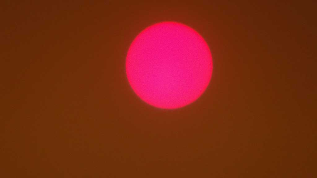 Forest Fires Turning the Sun Red, Sydney Visit, Australia