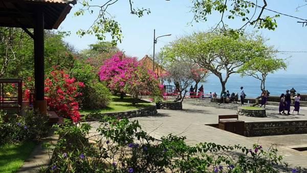 Flowering Trees, Uluwatu, Bali
